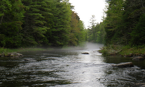 Guided Fishing on the Roach River