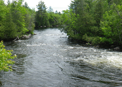 Katahdin Region Fishing