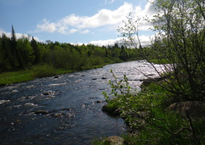moosehead-area-fishing