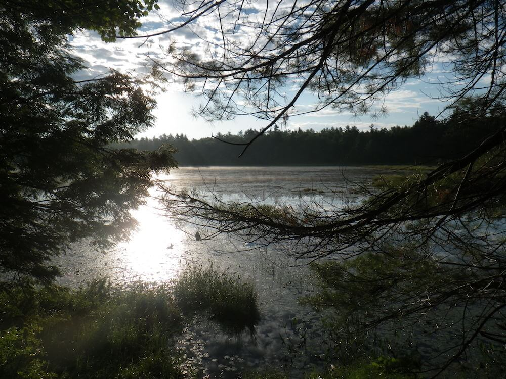 western-maine-fishing-trips