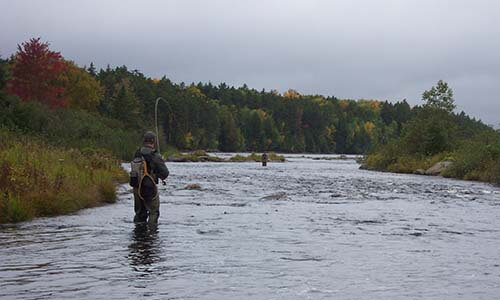 fly fishing maine guide