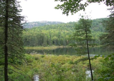 Guided Hiking Trips in Maine